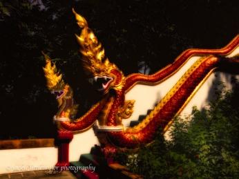 serpants Wat Sirey Phuket Thailand
