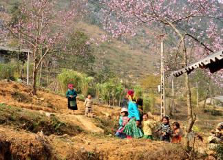 ríu rít mùa xuân Vu Ngoc