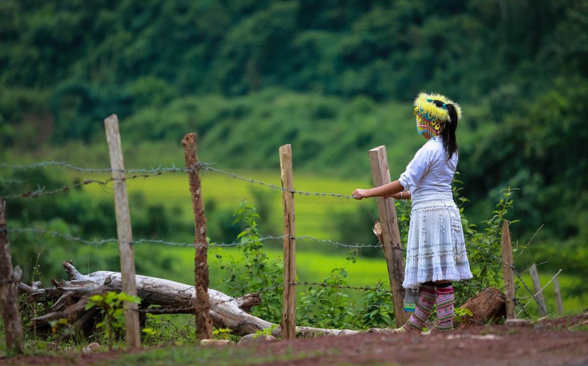 Terraces - Mu Cang Chai - VietNam by Richard Do