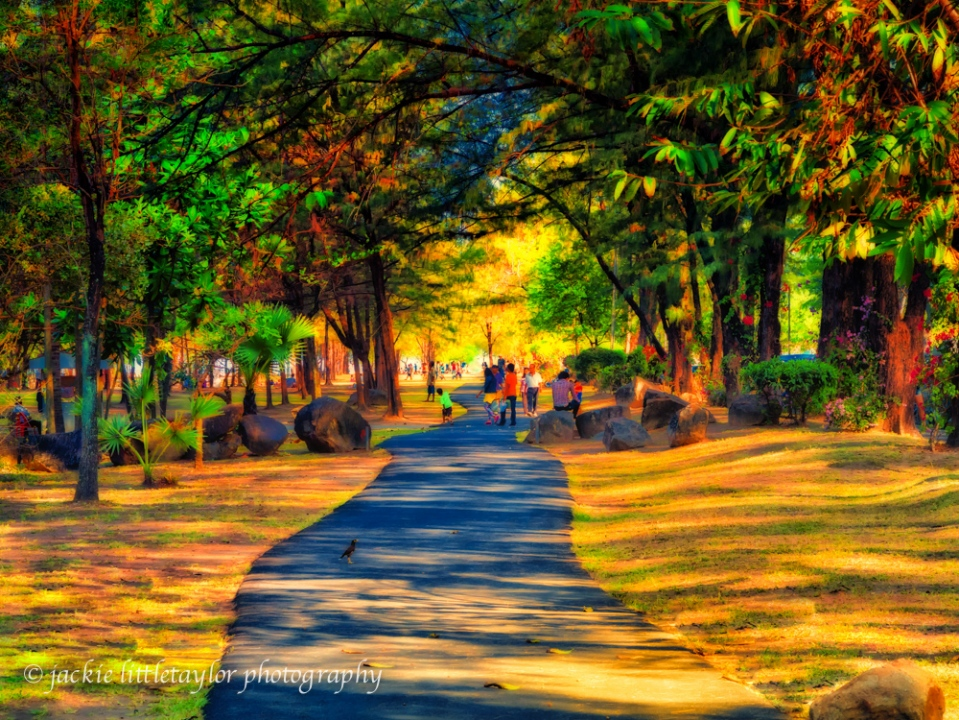 evening walks Saphin Hin Park impression