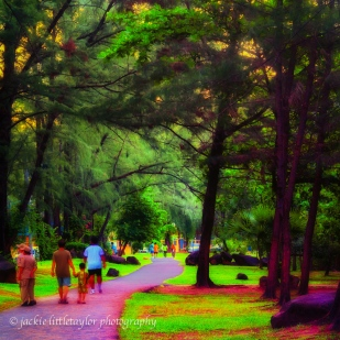 walking thru the park lare evening sunset green grass families
