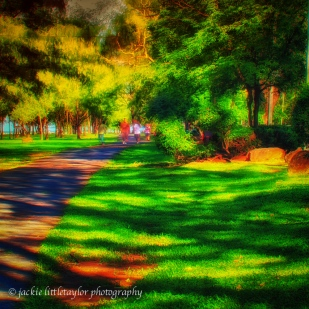 walk in the park bright sunset strong colours 1x1