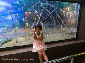 kids love the Phuket Aquarium