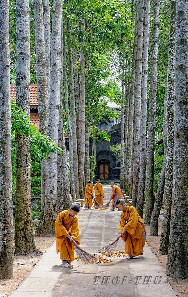 Lối Nhỏ Thiền Môn The Small Entrance Meditation Subjects