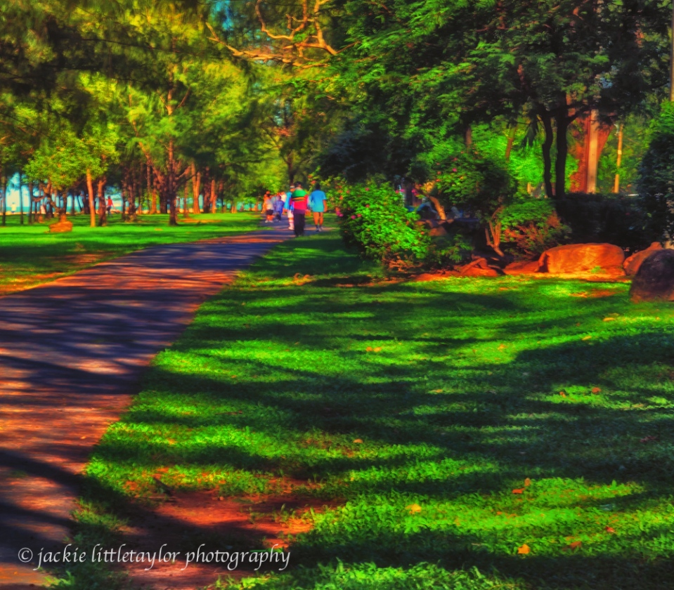 path in the park at sunset