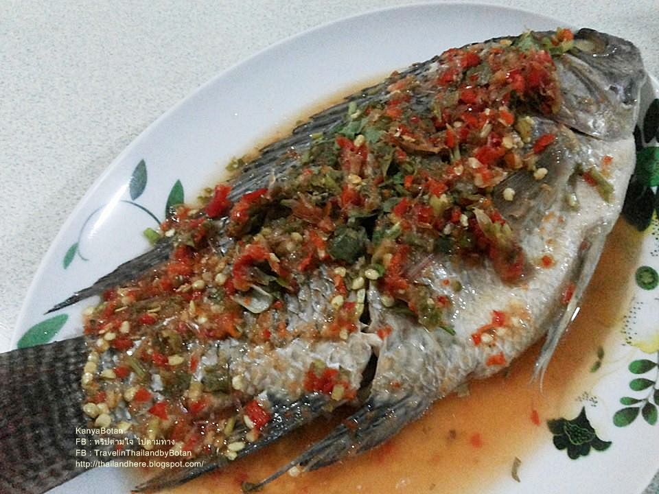 Steamed fish thai food by kanyabotan life se asia magazine steamed fish thai food by kanyabotan forumfinder Image collections