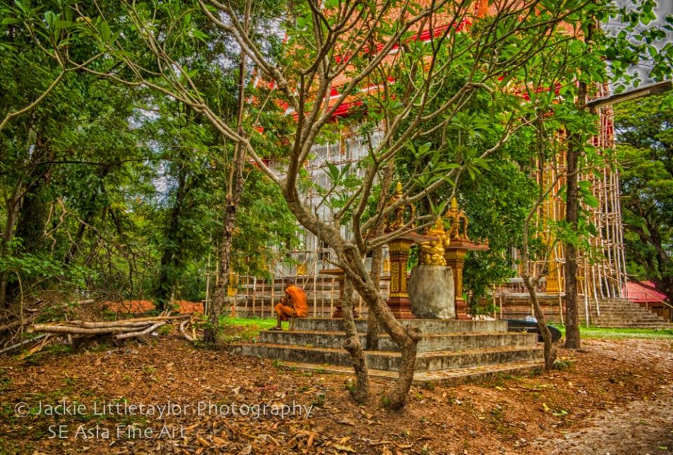 Monk resting under tree