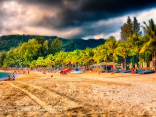 Kamala Beach at sunset and tourist and dogs Thailand