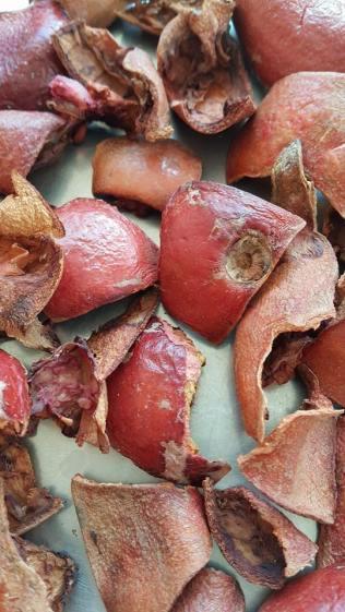 pomegranates peels