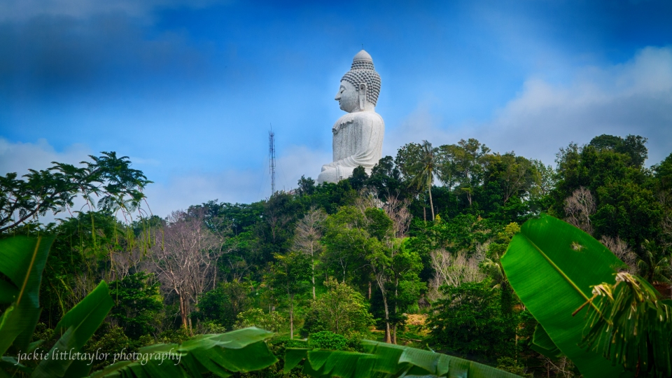 You will see the Big Buddha as you drive up