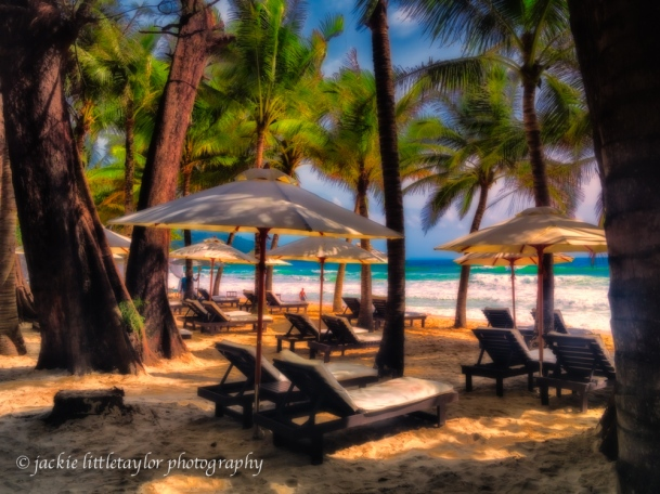 tropical trees sea breeze Surin Beach