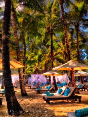 taking it easy under the tropical trees Surin Beach Phuket