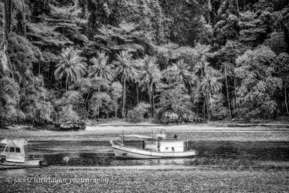 B/W HDR trawler lush tropical forest background