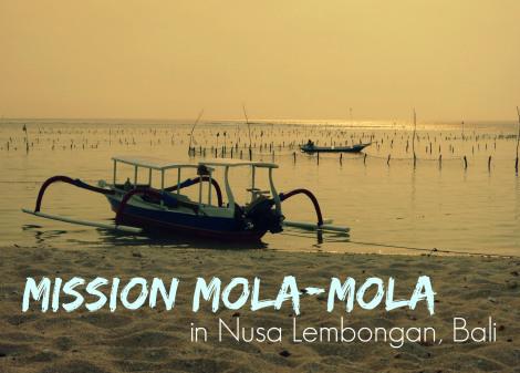 mission mola mola